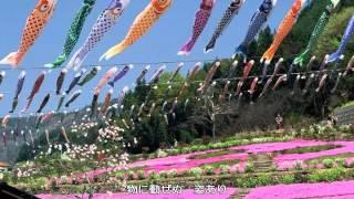 鯉のぼり 童謡(文部省唱歌) うた:倍賞千恵子 作詞:不詳 作曲:弘田...