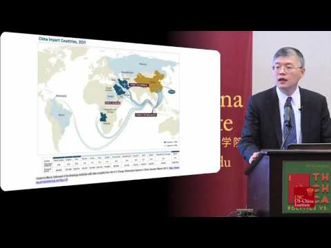 Dali Yang Speaks At The China Card Conference