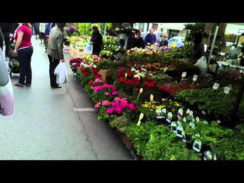 Treviso market