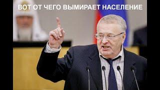 Жириновский как всегда прав