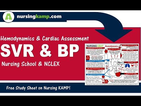 cardiac lecture 4 nursing kamp s scribble notes blood pressure map