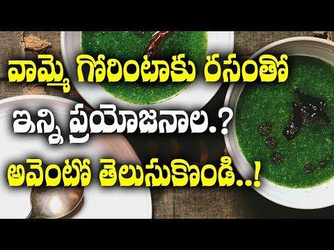 వామ్మో గోరింటాకు రసంతో ఇన్ని ఉపయోగాల? | Gorintaku Rasam Tho Inni Upayogala