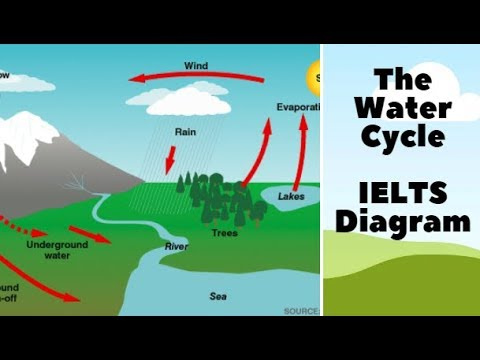 Lesson 4: IELTS Diagram: The Water Cycle  YouTube