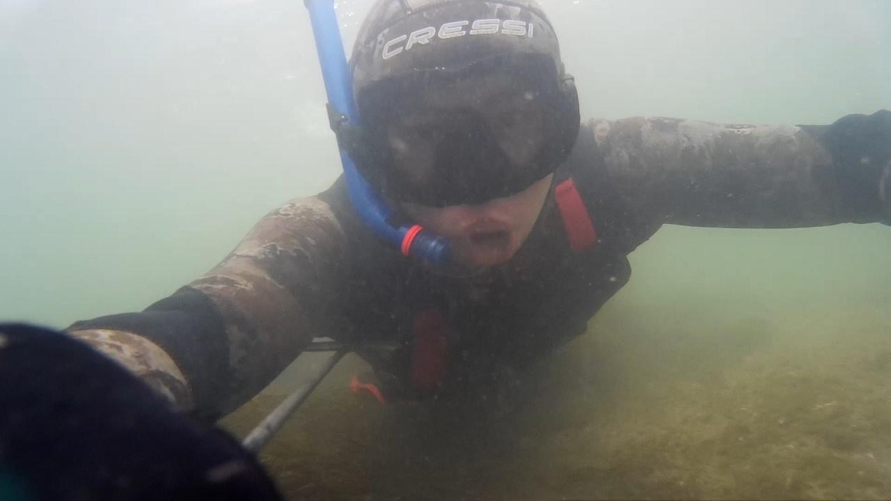 Первая подводная охота в 2017 году. Красивые кадры под водой. Невероятный прозрак. Зима. Мороз.