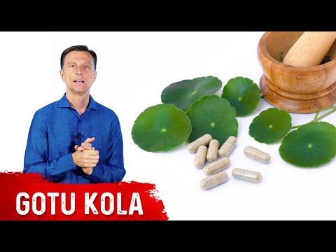 The Benefits of Gotu Kola