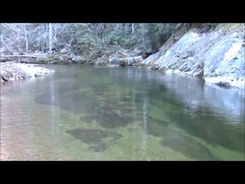Upper Wilson Creek Winter Trout Fishing