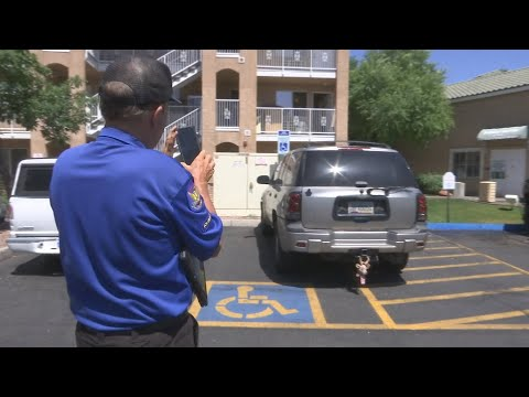 Phoenix drivers caught misbehaving by parking in disabled hash marks