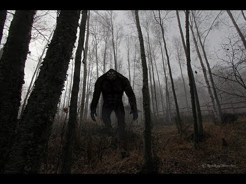 World Bigfoot Radio #45, Pt.1 ~ Upper Midwest Bigfoot encoun