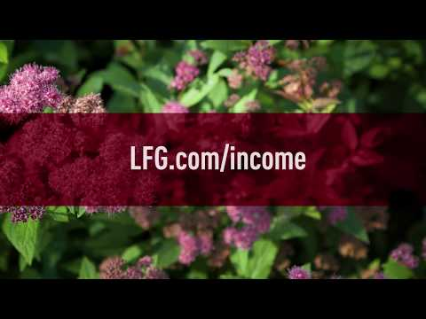 Lincoln Financial Group And The Alliance For Lifetime Income