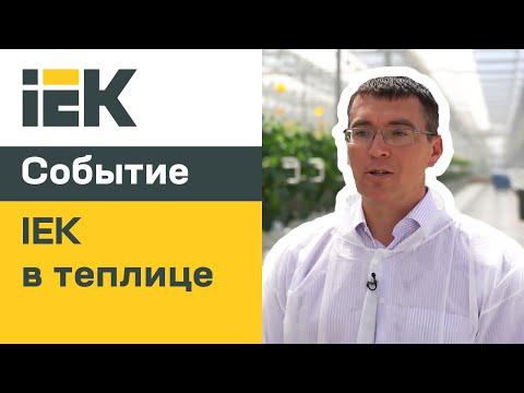 IEK GROUP: оборудование IEK в тепличном комплексе Ярославский