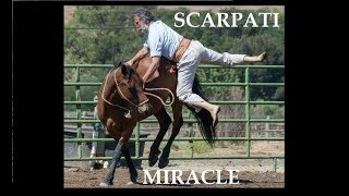 Amazing Old Horseman starting an 8 years old wild Mustang  Scarpati Horsemanship