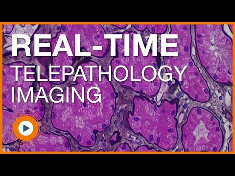 Clinical Pathology Video in HD