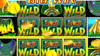 HANDPAY!! High Limit Jungle Wild