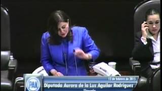 Dip. Aurora Aguilar (PAN) - Ley de Caminos, Puentes y Autotransporte Federal