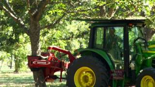 Profitable Pecans - Arkansas Farm Bureau