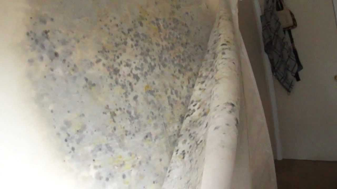 TempurPedic Mattress 9 month old found with MOLD  YouTube
