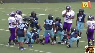 Detroit Titans vs. Eastside Raiders (D-Team) Game Highlights (7-18-2015)