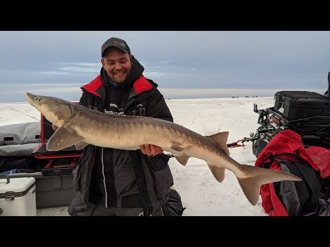 Ice Fishing A Cold Front On Lake Of The Woods For Walleye And Sauger - In-Depth Outdoors S14 E5