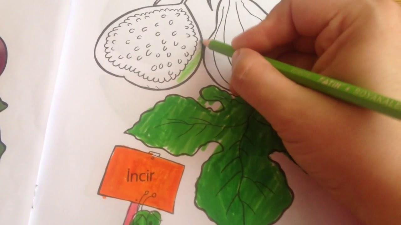 Mevsim Meyvesi Incir Boyama Fig Painting Youtube