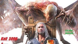 The Witcher 3 Wild Hunt Gameplay | GTX 1080 (50-75 fps)