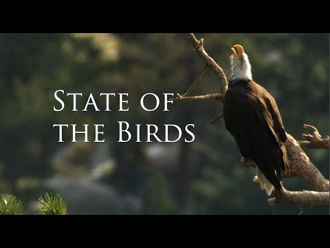 The State of the Birds 2014