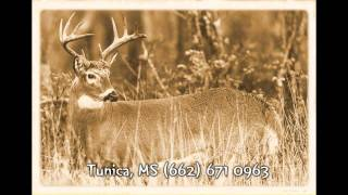 Deer Hunting Tunica, MS Casinos 662-671-9467 Next Tunica Casino Trip
