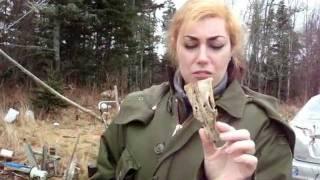 Cleaning & Bleaching Bones PT.1