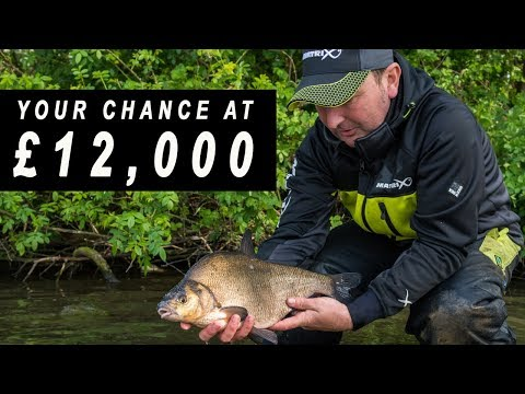 £12,000 GOLDEN ROD FEEDER QUALIFICATION - FEEDER FISHING
