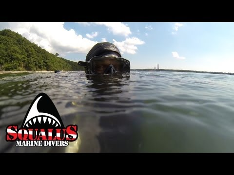 PORT JEFFERSON NY OLD PIER DIVE - SQUALUS MARINE DIVERS