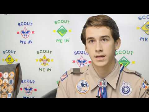 Merit Badges Needed for Bald eagle Scouts