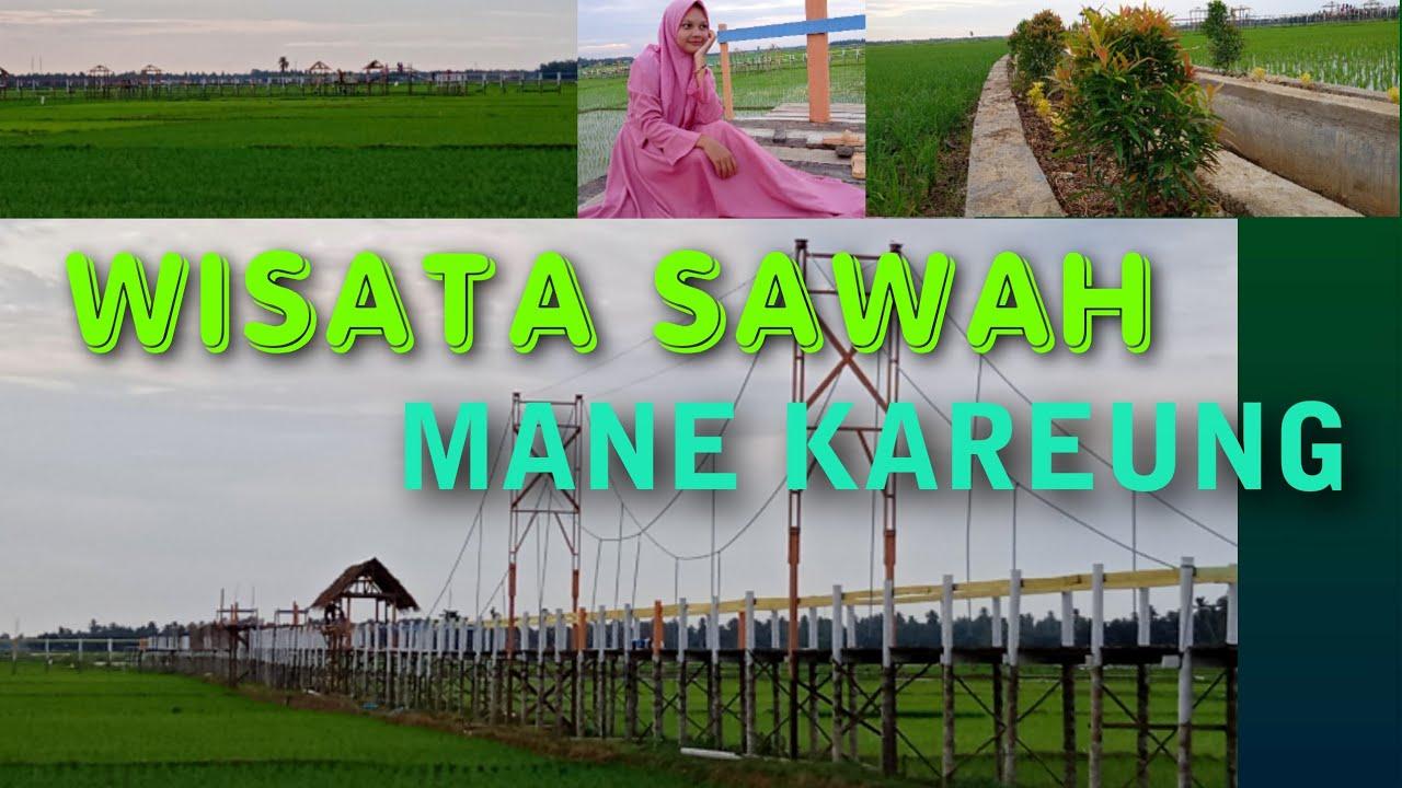 20+ Objek Wisata Sawah, Mane Kareung Kota Lhokseumawe   YouTube