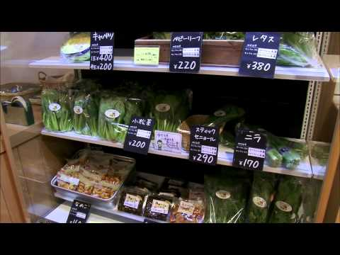 Fukushima's Food Fallout: Testing Groceries for Radiation in