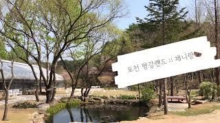서울 근교여행 포천 평강랜드 아이와 함께~