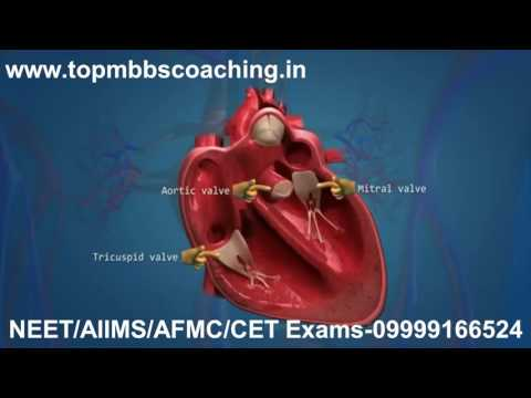 "www.topmbbscoaching.in Topic""Circulatory System""-NEET/AIIMS/AFMC/CET Tutorial video"
