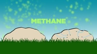 Science Bulletins: Dung Beetles Mediate Methane
