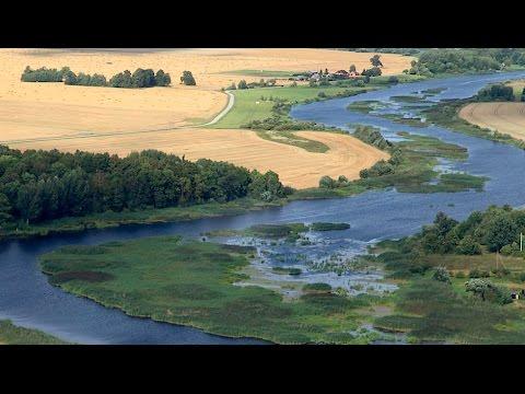 ARTE - Wildes Baltikum - Wälder und Moore