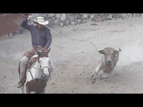 DuPont Pioneer Guanajuato 2017 | DJI | Drone | Alimentos| Semillaиз YouTube · Длительность: 4 мин50 с