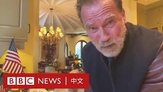 肺炎疫情:以身作則的明星們- BBC News 中文
