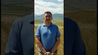 Албек Ибраимов: Мени иштен алуу - саясий буюртма