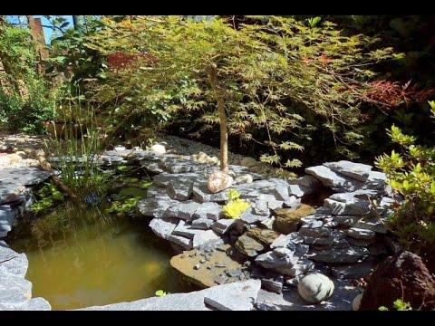 Laghetto da giardino con pesci piante acquatiche e una for Vasche pesci da giardino