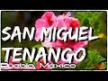 Video de San Miguel Tenango