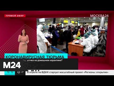 Как выживает москвичка, которую посадили на домашний карантин - Москва 24