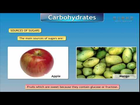 NUTRIENTS AND NUTRITION | KIDS KNOWLEDGE | ENGLISH