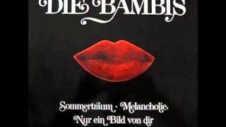 Die Bambis Melancholie