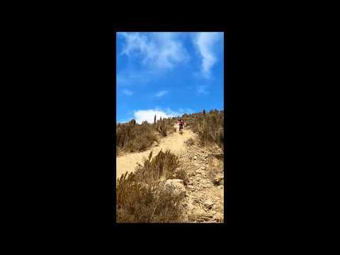 Downhill Cerro Grande  Matadero   La Serena Trek Session