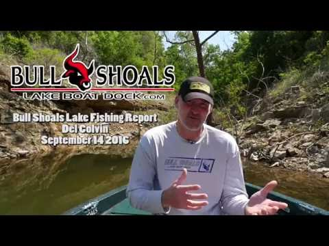Spearfishing bull shoals arkansas 2013 part 1 mostly for Bull shoals fishing report