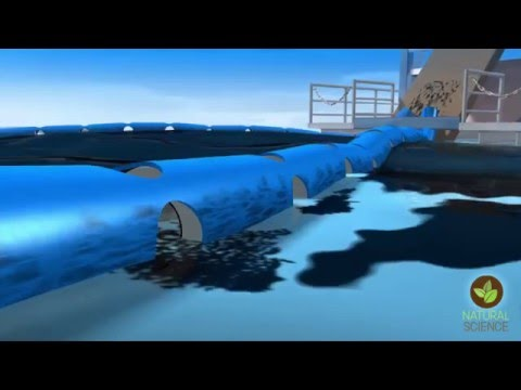 How to clean up an oil spill –magnetize the oil first   Arden Warner   TEDxNaperville