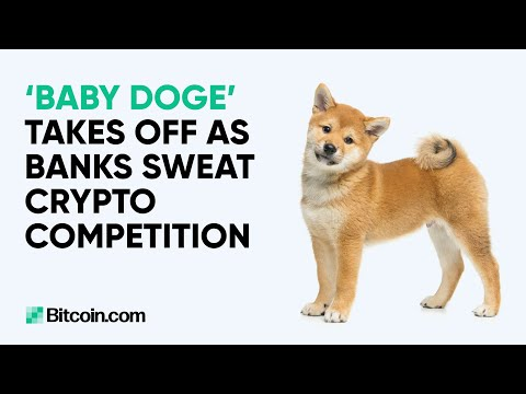 'Baby doge' takes off as banks sweat crypto competition : The Bitcoin.com Weekly Update