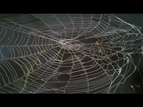 how to spray paint spider webs spray paint art secrets ...