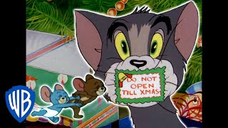 Том и Джерри Дома на Рождество WB Kids